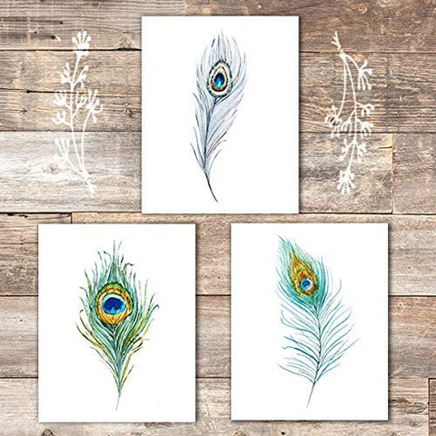 Peacock Feathers Wall Art Prints (Set of 3) - Unframed - 8x10s