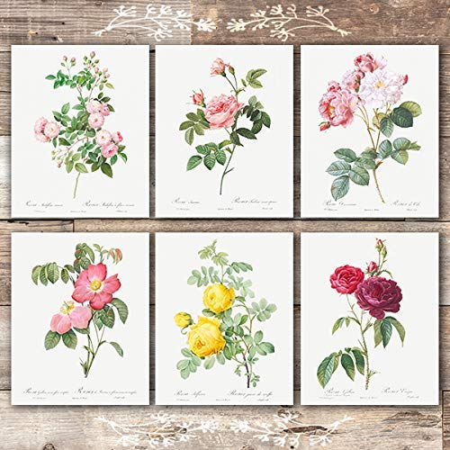 Vintage Flowers Wall Art Prints (Set of 6) - Unframed - 8x10s | Roses - Dream Big Printables