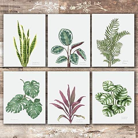Tropical Leaves Wall Art (Set of 6) - Unframed - 8x10s | Botanical Prints - Dream Big Printables