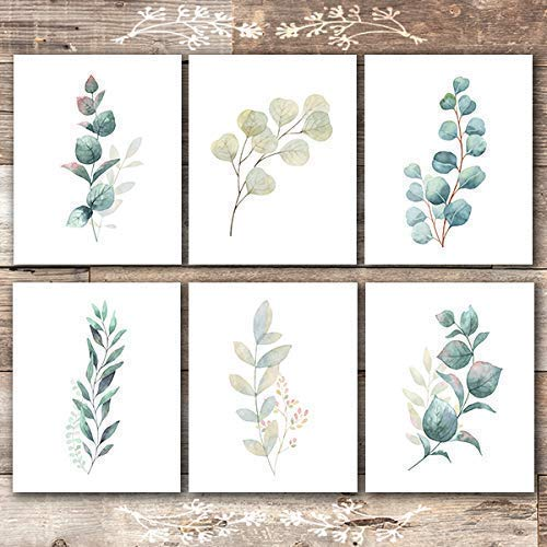 Botanical Prints Wall Art - Eucalyptus Leaves - (Set of 6) - Unframed - 8x10s - Dream Big Printables
