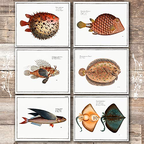 Exotic Vintage Fish Wall Art Prints (Set of 6) - Unframed - 8x10s - Dream Big Printables