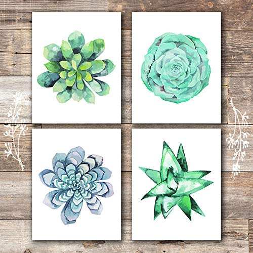 Succulent Wall Art Prints (Set of 4) - 8x10s | Botanical Prints - Dream Big Printables