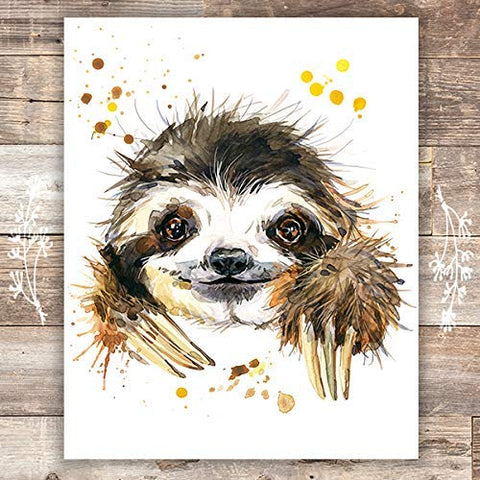 Sloth Wall Art Print - Unframed - 8x10