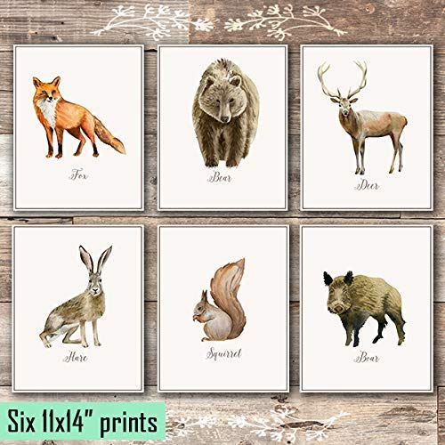 Vintage Woodland Animals Art Prints (Set of 6) - Unframed - 11x14s - Dream Big Printables