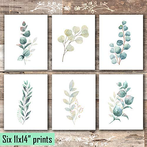 Botanical Prints Wall Art - Eucalyptus Leaves - (Set of 6) - Unframed - 11x14s - Dream Big Printables