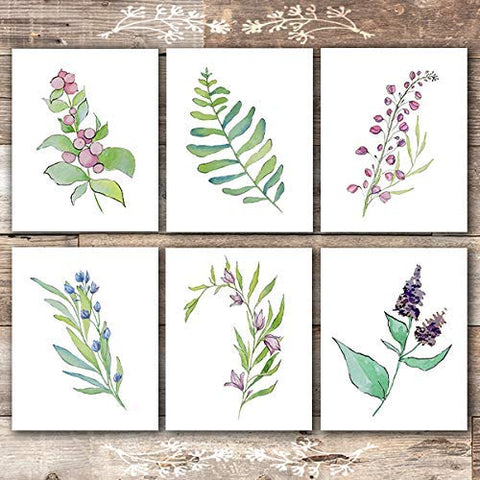 Flower and Leaf Botanical Prints (Set of 6) - Unframed - 8x10s