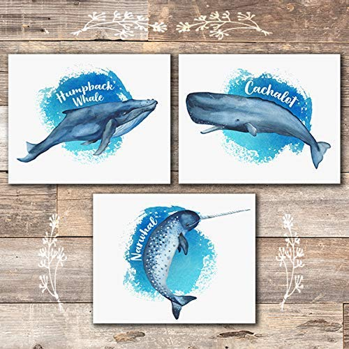 Whales Nautical Wall Decor Art (Set of 3) - Unframed - 8x10 - Dream Big Printables