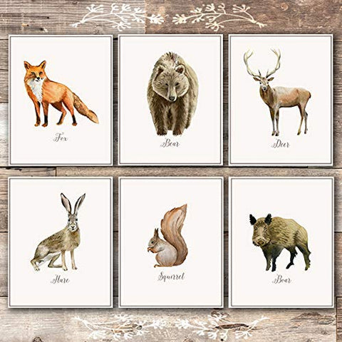 Vintage Woodland Animals Art Prints (Set of 6) - Unframed - 8x10s