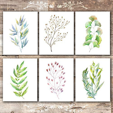 Colorful Botanical Watercolors (Set of 6) - Unframed - 8x10s