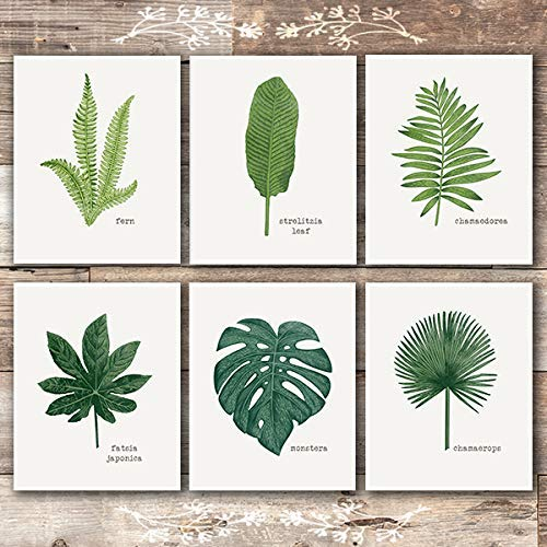 Tropical Leaves Wall Decor Art Prints (Set of 6) - Unframed - 8x10s | Botanical Prints Wall Art - Dream Big Printables