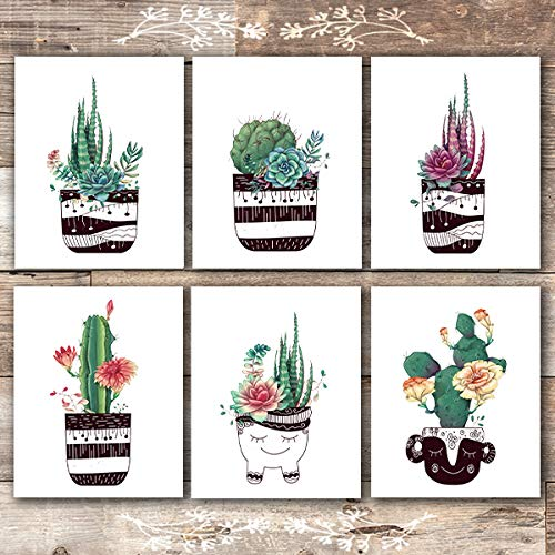 Potted Succulents Botanical Prints - (Set of 6) - Unframed - 8x10s - Dream Big Printables