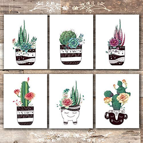 Potted Succulents Botanical Prints - (Set of 6) - Unframed - 8x10s