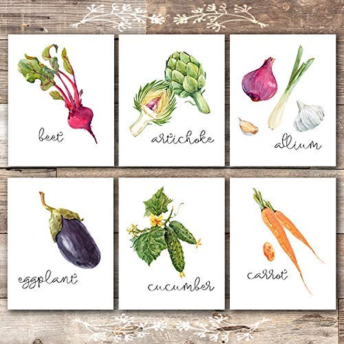 Kitchen Wall Decor Art Prints - Botanical Prints - (Set of 6) - Unframed - 8x10s - Dream Big Printables