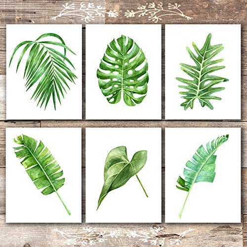 Tropical Leaves Wall Decor Art Prints Set Of 6 Unframed 8x10s Botanical Prints Wall Art Dream Big Printables Choose your favorite tropical leaves paintings from millions of available designs. tropical leaves wall decor art prints set of 6 unframed 8x10s botanical prints wall art