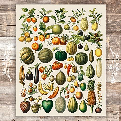 Vintage Fruits and Vegetables - Unframed - 8x10 | Kitchen Wall Art - Dream Big Printables