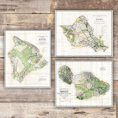 Vintage Hawaii Survey Maps Art Prints (Set of 3) - Unframed - 8x10s - Dream Big Printables