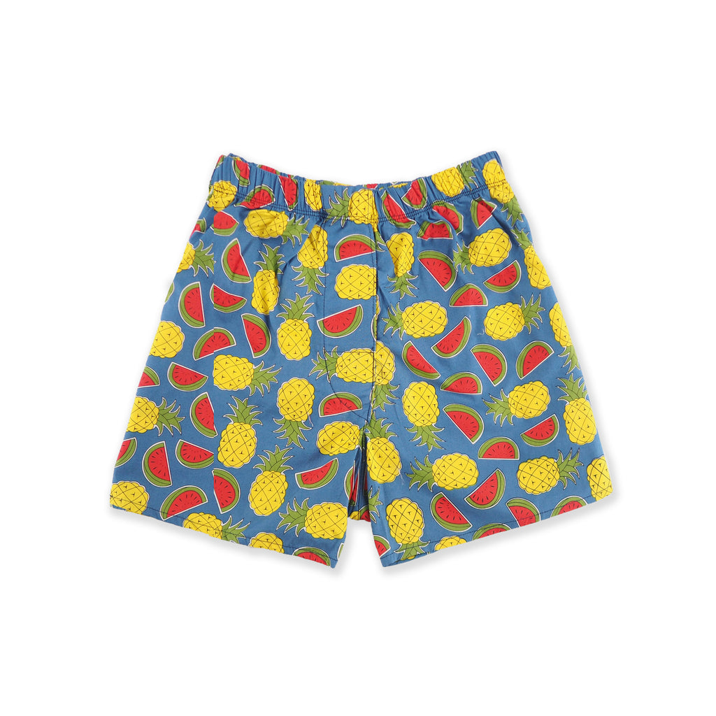 Blue Pine-melon Boxer shorts