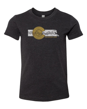 *CLOSEOUT* Colorado Logo T-Shirt - Youth