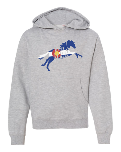 Colorado Flag Logo Hoodie - Youth