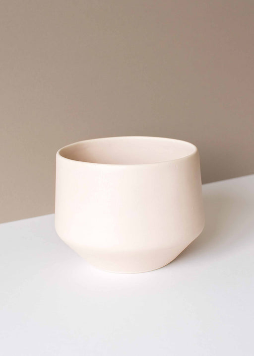 Amy Hamley- Blush Porcelain Deco Planter - Large