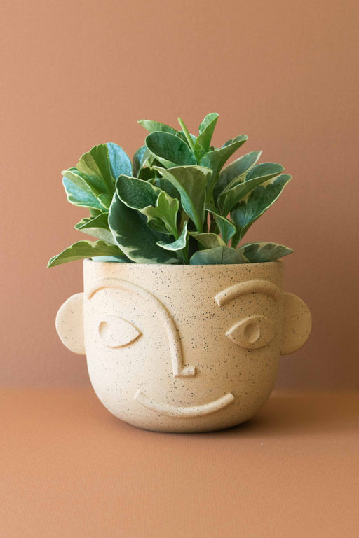 A Ways Away - Dimensional Face Planter