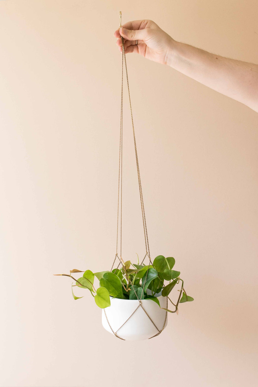 Steady Hand Creative Chain Plant Hanger
