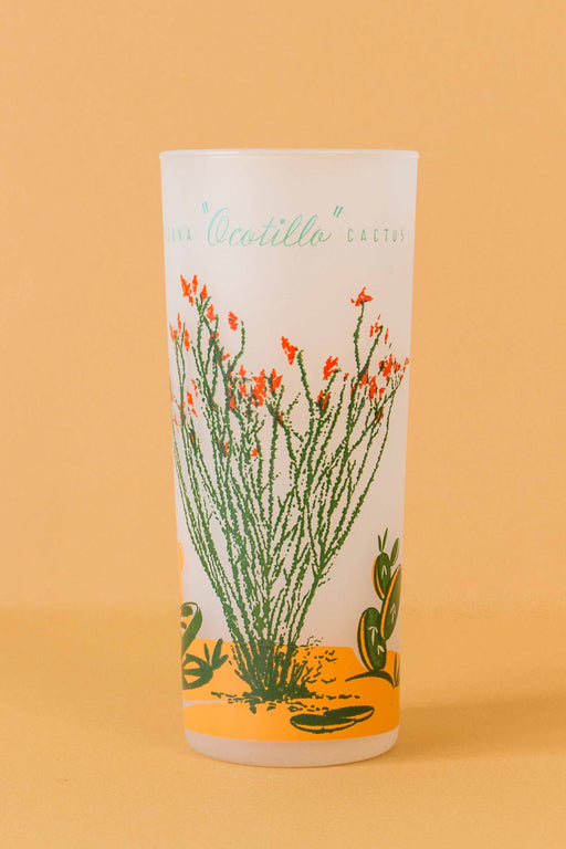Arizona Ocotillo Frosted Tumbler
