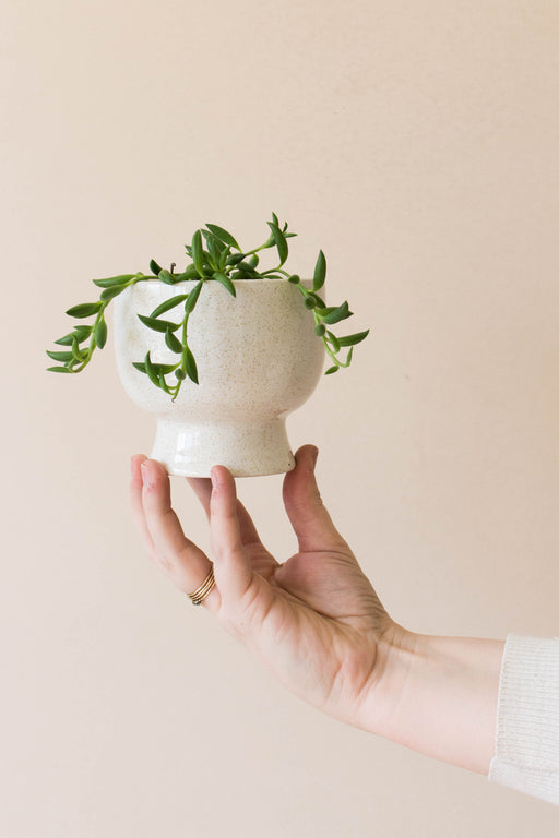 Small White Speckled Planter