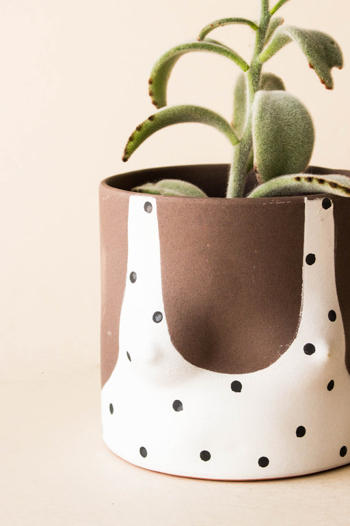Group Partner - Polka Dot Tops Planter