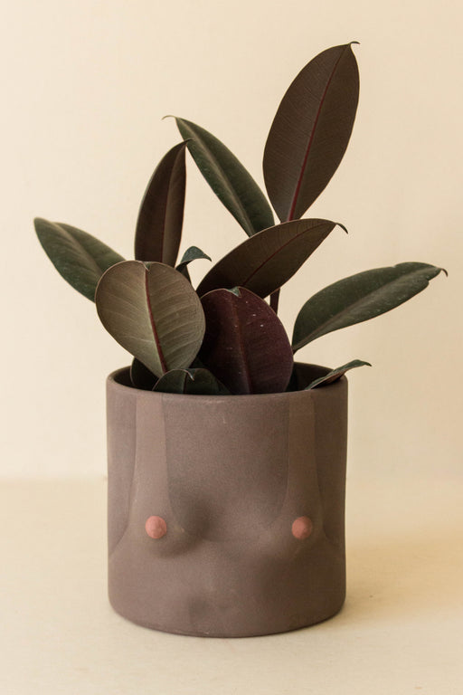 Group Partner - Nude Tops Planter