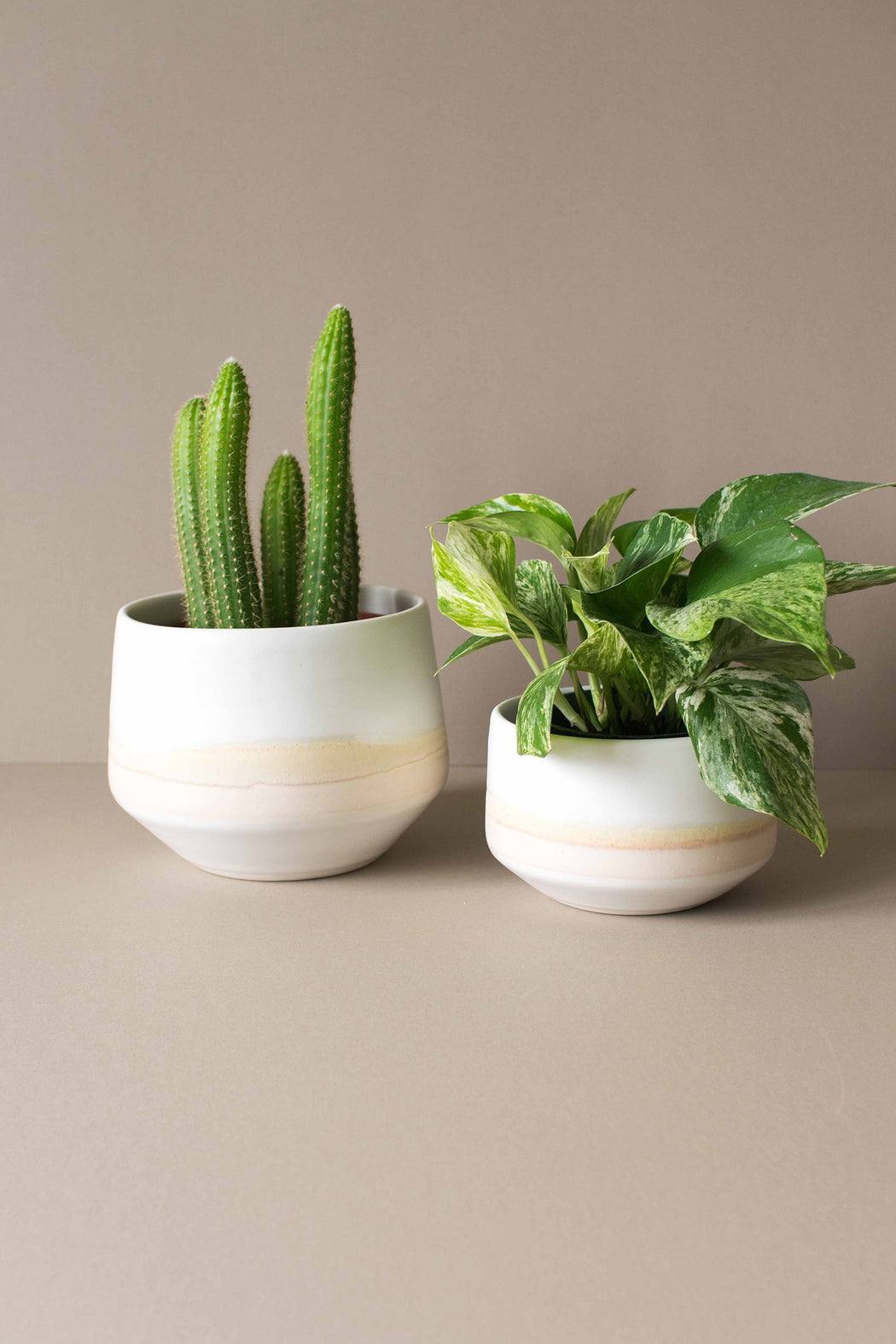 Mesa Deco Porcelain Planter - Amy Hamley