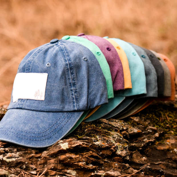 Montana Trees Dad Hat - Multiple Colors 1