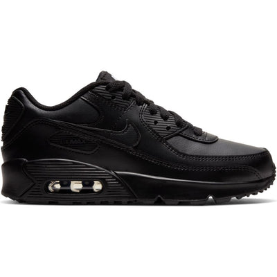 Big Kids' Nike Air Max 90 LTR Shoe