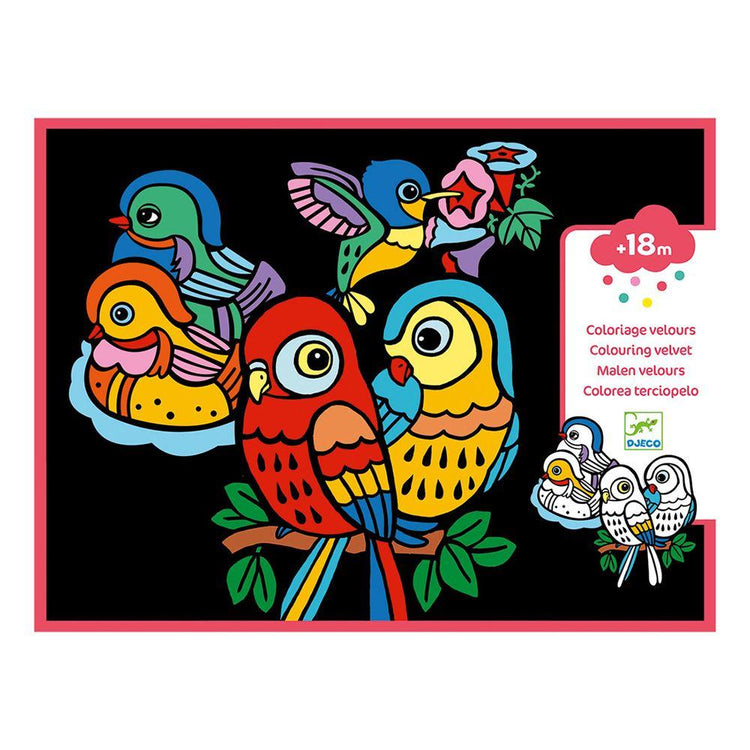 Arts & Crafts - Colouring Velvet - Baby Birds
