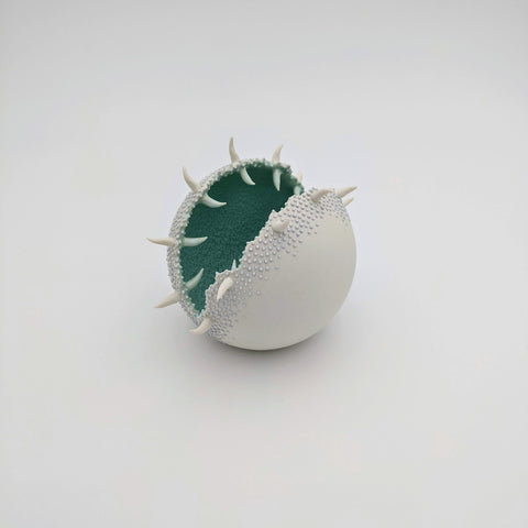 Porcelain Urchin White/Green