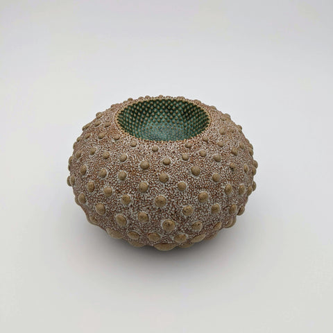 Sea Egg Vessel Green