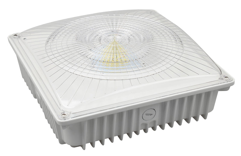 LED Canopy Light - 100W Outdoor Parking Garage Light - (UL + DLC Listed)