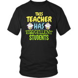 Teacher - Eggcellent - District Unisex Shirt / Black / S - 7
