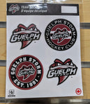 "Storm 5""x 7"" Mini Team Decals"