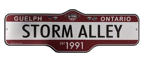 Storm Alley Street Sign