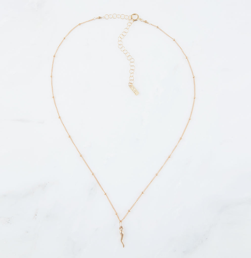 Baby Italian Horn Necklace