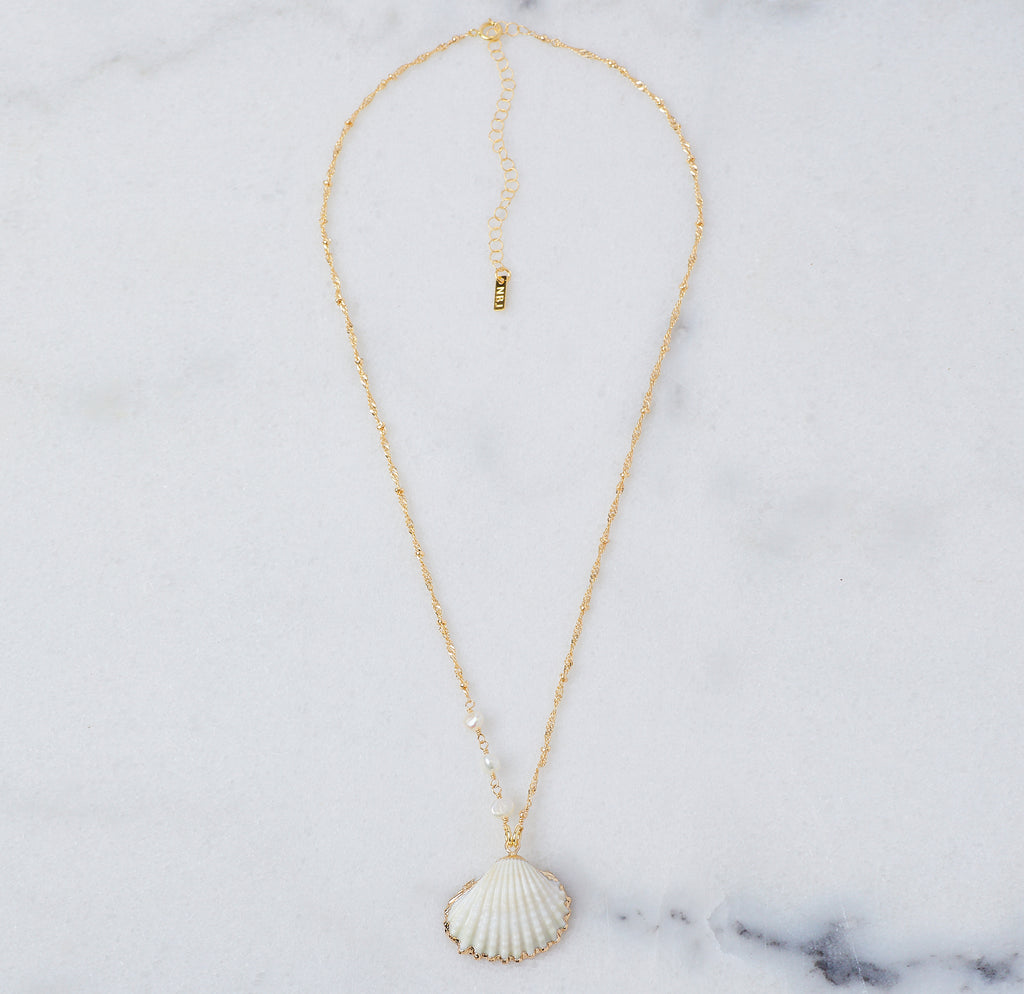 Coquille Shell Necklace