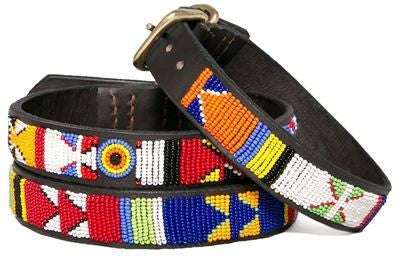 PRIMARY BEADED DOG COLLAR