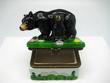 Alaska Gifts Jewelry Boxes Black Bear With Cub - DutchNovelties  - 2