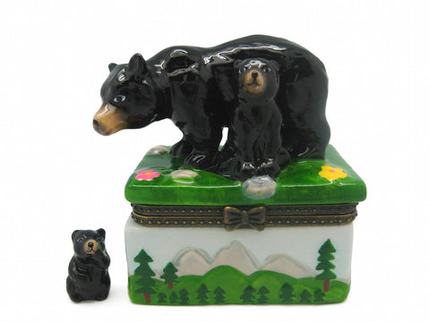 Alaska Gifts Jewelry Boxes Black Bear With Cub - DutchNovelties  - 1
