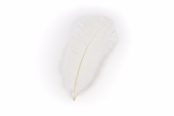 White Feather for Festival Hats -2