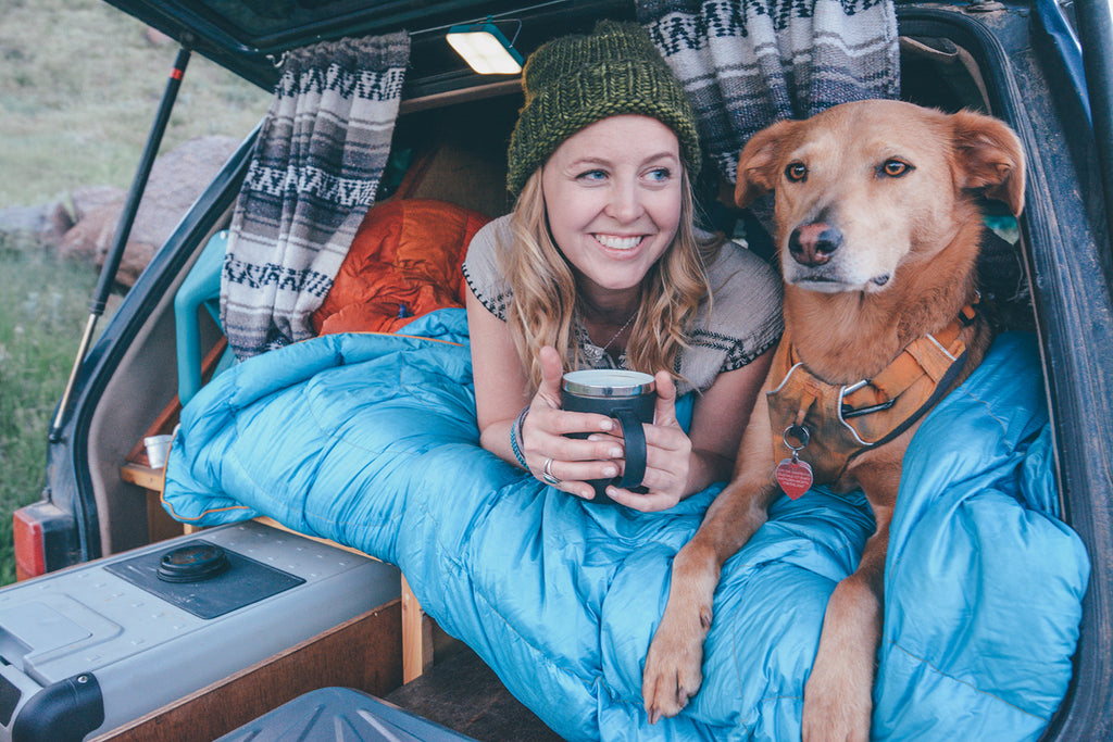 Top 5 Ways to Vanlife with your Dog