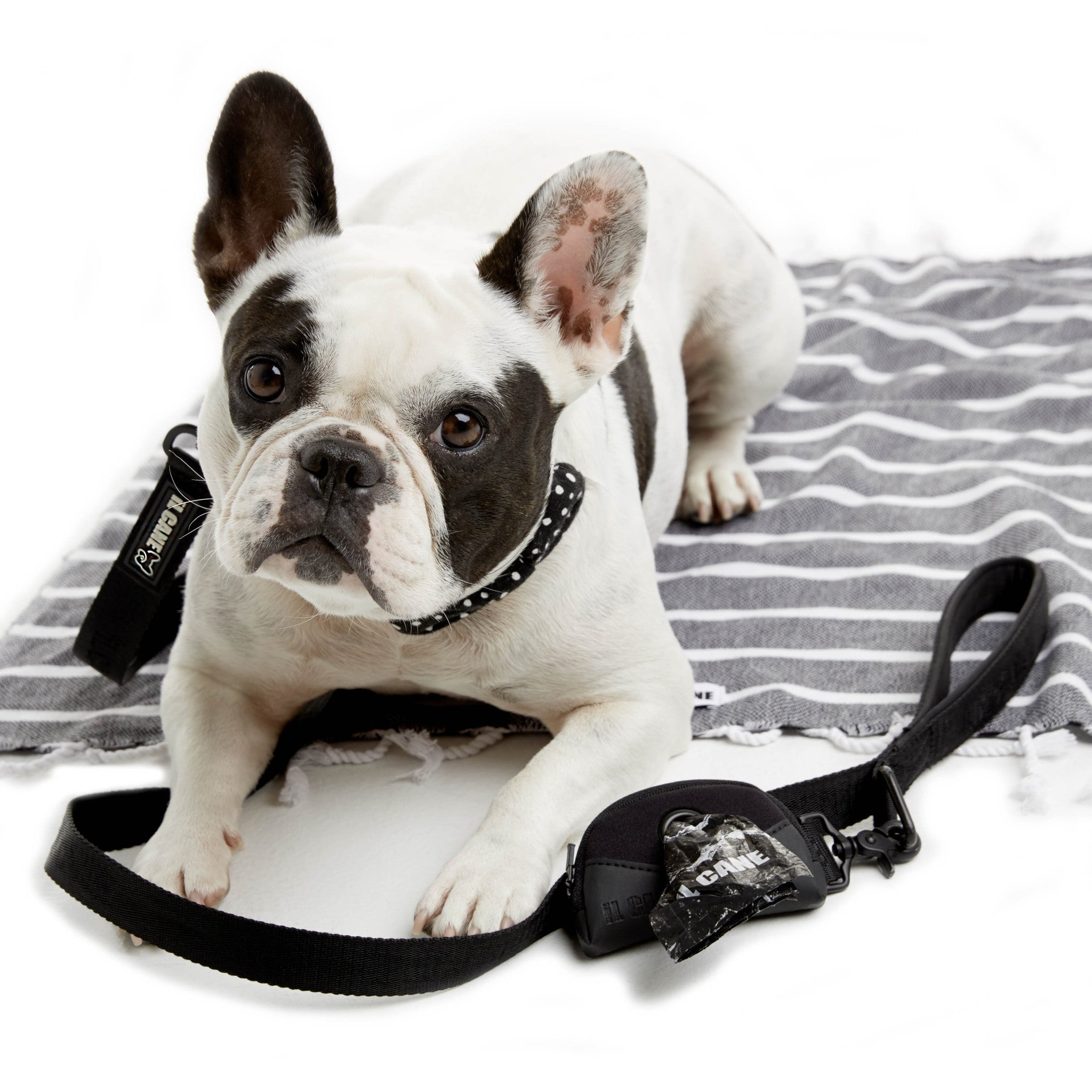 iL CANE - Breezy Pick Up Bag Holder
