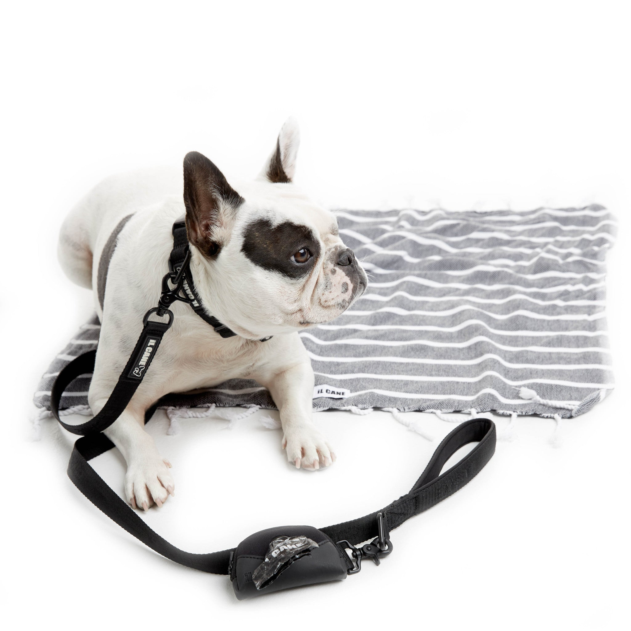 iL CANE - Breezy Adjustable Collar