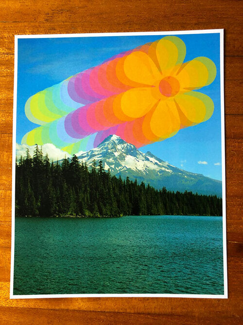 Mt Hood Layered Rainbow Flowers